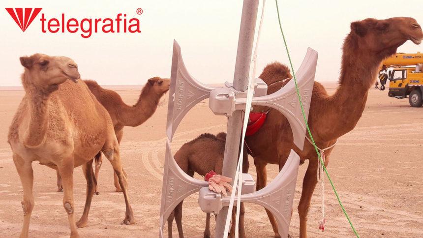 Пуско-наладочные работы на сиренах в Кувейте глазами наших коллег
