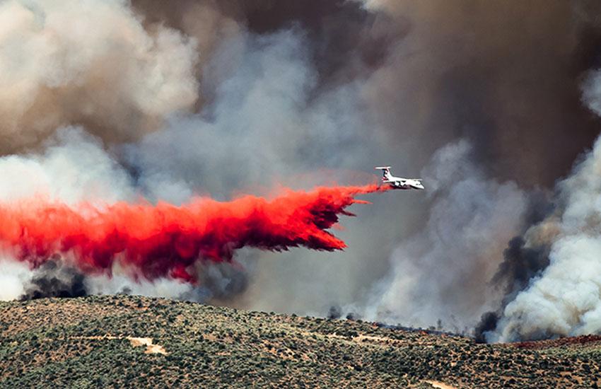 Лесных Пожарах