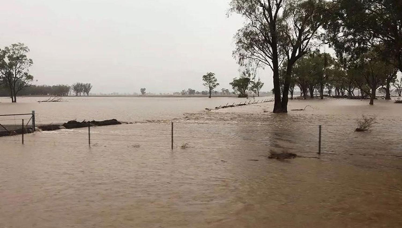 Величайшие наводнения в Австралии за последние 50 лет