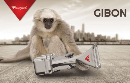Do You Know … Why the Gibon Electronic Siren Is Called Gibon?